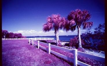 Film Photography Podcast – Episode 95 – January 15, 2014