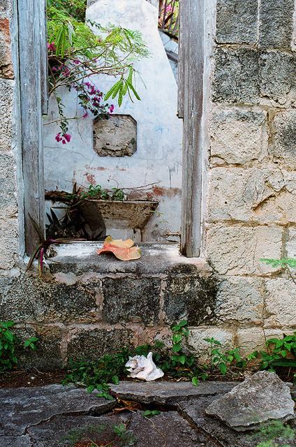 FPP Film Fuji 400 Nikon n90s Royal Island Harbour Bathroom Ruin Jimages